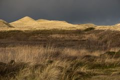 Dunes on the North Frisian Island Amrum. In Germany Stock Photography