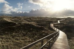 Dunes on the North Frisian Island Amrum. In Germany Royalty Free Stock Photos