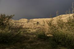 Dunes on the North Frisian Island Amrum. In Germany Royalty Free Stock Photography