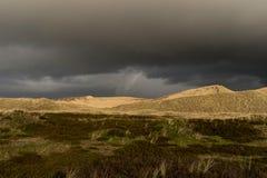 Dunes on the North Frisian Island Amrum. In Germany Royalty Free Stock Photo