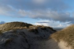 Dunes on the North Frisian Island Amrum. In Germany Royalty Free Stock Images