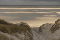 Dunes on the North Frisian Island Amrum. In Germany Royalty Free Stock Image