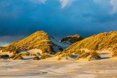 Dunes on the North Sea coast on the island Amrum, Germany.  royalty free stock photography