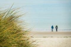 Dunes on the North Sea coast on the island Amrum Royalty Free Stock Photos