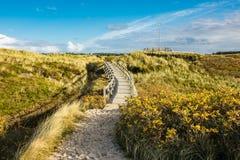 Dunes on the North Sea coast on the island Amrum Stock Photos