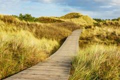 Dunes on the North Sea coast on the island Amrum, Germany Stock Photography