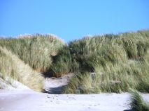 Dunes North Sea island. Rows of dunes sight on an beautiful day Royalty Free Stock Photo