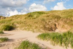 Dunes at the north sea Royalty Free Stock Photography