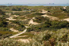 The dunes and North-Sea [Netherlands] Royalty Free Stock Images