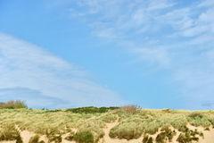 Dunes at the North sea shore in Vlissingen Royalty Free Stock Image