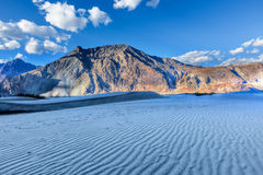 Dunes in Nubra Valley, Ladakh, India Royalty Free Stock Photography