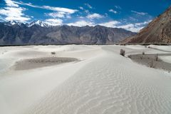 Dunes in Nubra Valley Royalty Free Stock Images