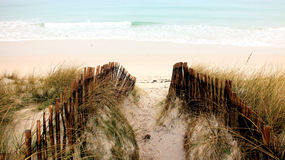 Dunes and ocean Royalty Free Stock Images