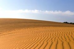 Dunes onduleuses arénacées jaunes dans le désert à la journée Photo libre de droits