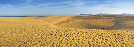 Dunes Panorama in Fuerteventura Royalty Free Stock Photo