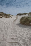 Dunes with pathway at the Danish North Sea coast Stock Photos