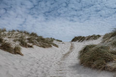 Dunes with pathway at the Danish North Sea coast Stock Images