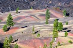 Dunes peintes colorées Photos libres de droits
