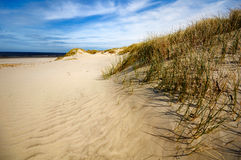 Dunes, plage et côte chez Ameland, Hollandes Images stock