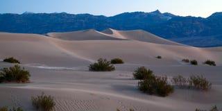 Dunes plates de mesquite photographie stock libre de droits