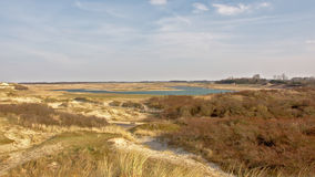 Dunes and pond at the Zwin, nature reserve next to the Belgian coast Royalty Free Stock Photo