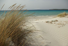 Dunes at Porto Pino's Bay royalty free stock photo