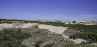 Dunes at Provincetown, MA Cape Cod Royalty Free Stock Images