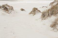 Dunes on Romo Island - Denmark. Stock Photos