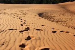 dunes rouges vietnam Image libre de droits