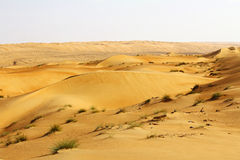 Dunes of the Rub al Khali or Empty Quarter. Straddling Oman, Sau Stock Photography