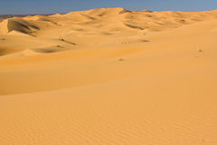 Dunes of Sahara Royalty Free Stock Photo