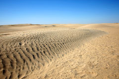 Dunes in Sahara Royalty Free Stock Photo