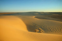 Dunes of Sahara Royalty Free Stock Images