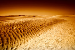 Dunes in Sahara black and white Royalty Free Stock Images
