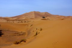 Dunes in the Sahara deformed by the wind, Morocco Royalty Free Stock Photos