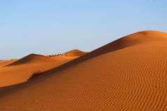 Dunes of Sahara Desert. Red Moroccan sands of Sahara Desert Royalty Free Stock Photos