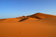 Dunes of Sahara Desert. Red Moroccan sands of Sahara Desert Royalty Free Stock Images