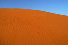 Dunes of Sahara Desert Royalty Free Stock Photo