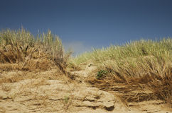 Dunes of sand and grass, nature backgrounds with skyline, UK Royalty Free Stock Image