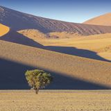 Nature and landscapes of Namibia. Dunes and sand of Namibian deserts. Global warming on the planet. Expansion of territories of deserts. Climatic changes and stock photography