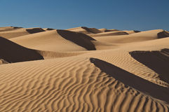 Dunes, sand, Sahara, desert Royalty Free Stock Photos