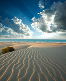 Dunes of sandy beach on background of sea and dawn sky Stock Images