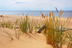 Dunes, Saulkrasti, Baltic Sea, Latvia. Royalty Free Stock Photo
