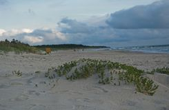 Dunes and the sea in Palanga. Stock Photography