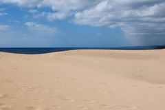 Dunes and sea. Sand desert dunes of Cyprus island - Turtle Beach - Dipkarpaz Royalty Free Stock Image