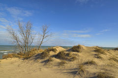Dunes on shore of lake michigan. Royalty Free Stock Photography