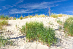 Dunes in a  Slowinski National Park, Poland Royalty Free Stock Image