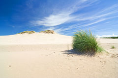 Dunes in a  Slowinski National Park, Poland Stock Photo