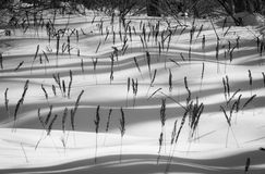 Dunes of Snowy Crystals Royalty Free Stock Photo