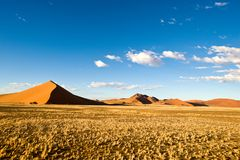 Dunes in Sossusvlei, Namibia. Huge orange dunes in the Sossusvlei, Namibia, West Africa, with dry grass in front and blue sky with white Clouds royalty free stock photos